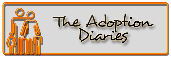 The Adoption Diaries